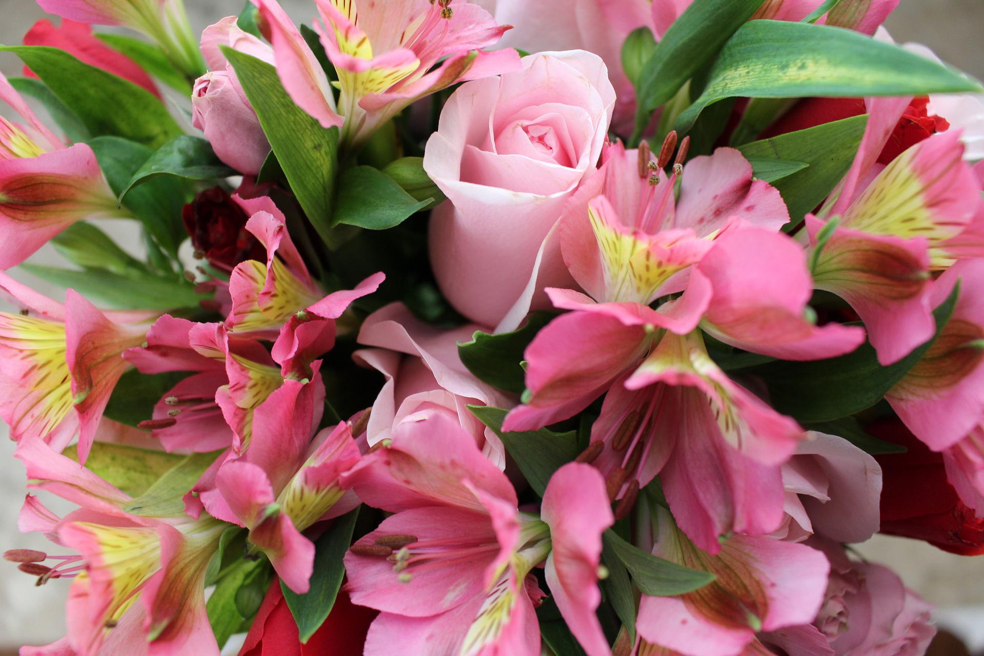 Цветы подарить беременной