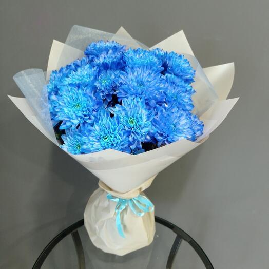 Хризантема 💙 голубая