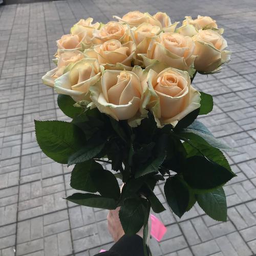 Службы доставка цветов и букетов от mr flowers твери